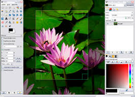 Gimp Download 2 8 Free Photo Editing Software Online Softlay