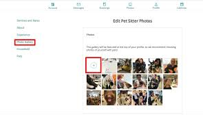 Pet Sitter Profile Examples How Can I Make Sure My Pet Sitter Profile Is Purrrfect