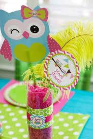 Etsy Owl Baby Shower  Home Decorating Interior Design Bath Owl Baby Shower Decor