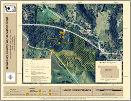 fowlerforestmap2011