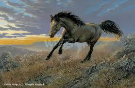 a925214282 i free to run wild horse i