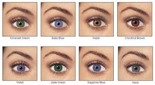 Iris Color Chart Example About Eye Color Determination Chart