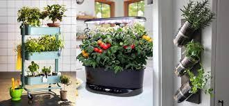 31 indoor gardening ideas for small