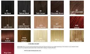 Puretemplehair Premium Indian Virgin Remy Hair Color Chart