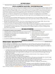 Sample Resume Format For Marketing Executive Resume Template Ideas