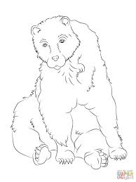 New Brown Bear Coloring Pages - Animal - Creative Brown Bears ...