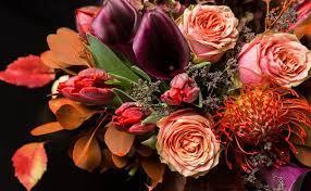 autumn flowers – Floralife – Blog