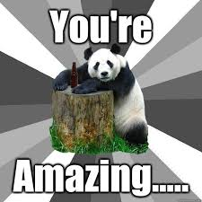 You're Amazing..... - Pickup-Line Panda - quickmeme via Relatably.com