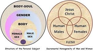 Venn Diagram Jesus Mother Pelican Meditations On Man And Woman Humanity And Nature