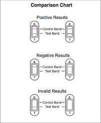 Ovulation Midstream Test Results And Instructions Www