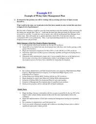 020 Sales Rep Business Plan Template Ideas Skine Resume Best