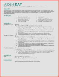 Excellent Resume Example Best Of Examples Resumes Best Resume 2017 ...