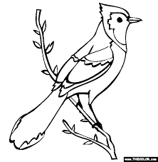 Small Picture Blue Jay Coloring Page Free Blue Jay Online Coloring