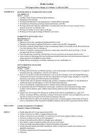 Manager Marketing Resume Samples Velvet Jobs Sample Solagenic