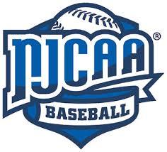 Image result for Juco baseball