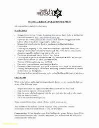 23 Elegant Resume Interests Examples Vegetaful Com