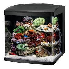 office desk fish tank. Office Desk Fish Tank. 1920x1080 Animated Aquarium Scene Lamp Tank