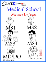 Medical School Memes by school year - so true! | Residency ... via Relatably.com