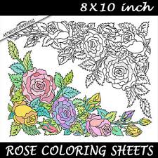 rose coloring page roses color sheet printable digital