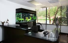 Black aquarium for the office