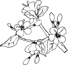 Small Picture Blooming Flowers In May coloring page Free Printable Coloring Pages