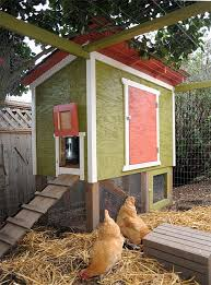 71 Best Chickens Images On Pinterest  Animals Backyard Chickens Backyard Chicken Blog
