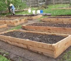 raised beds preparing your garden beds