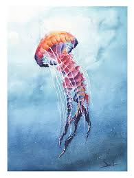 watercolor jellyfish painting by artist eric sweet