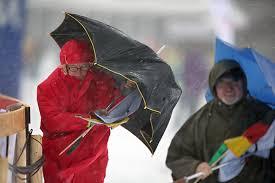 Лыжные гонки в Беларуси Белорусский лыжный союз Лыжные гонки в Беларуси