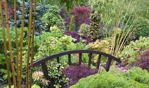 best garden plants. Delighful Best With A Little Imagination You Can Transform Muddy Puddle Into An Exciting  Planting Opportunity Throughout Best Garden Plants