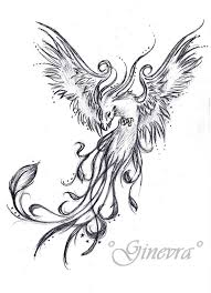 Collection Of 25 Phoenix Tattoo Drawing Page