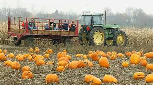 Image result for hay ride