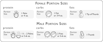 Food Portion Size Chart Food Portions Zupp Fitness