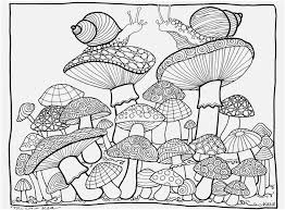 827x609 the superior image mushroom coloring pages information