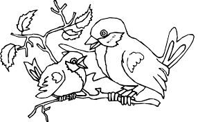 Small Picture Baby bird coloring pages and mom ColoringStar