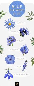 Light Blue Flower Names 30 Types Of Blue Flowers Ftd Com