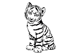 baby tiger clipart black and white. Brilliant Tiger 600x450 A Cute Tiger Cub In Front Of Camera Coloring Page Throughout Baby Clipart Black And White