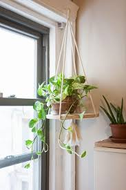 Image result for how to hang plants