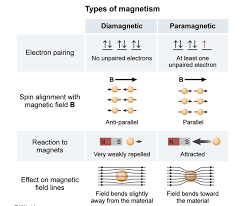 Diamagnetic Paramagnetic Magnetic Field Could Someone Explain This