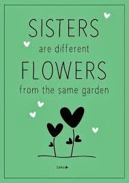 sisters are flowers elske elskeleenstra nl  sisters are flowers elske elskeleenstra nl 100daysofsisters instagram photo