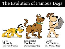 Canine Evolution Chart Canine Evolution Chart Collegehumor Post
