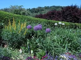 dc gardens flickr