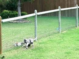 invisible fence for small dogs. Small Fence For Dogs Dog Shock Collar Great Best Invisible .