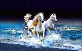 horses wallpaper hd. Perfect Wallpaper Wallpapers ID321674 In Horses Wallpaper Hd L