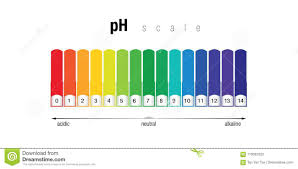 Ph Color Chart Ph Color Chart Stock Illustration Illustration Of 0to14ph