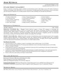 Coo Resume Template Resume Template Archaicawful Audit Operation Manager Project 43