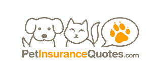 petinsurancequotes protects your pet s health and bank balance dog insurance quotes comparison raipurnews pet insurance quote comparison 44billionlater