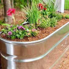 transform a water trough into a planter