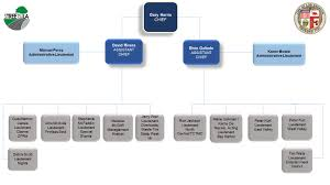 Investigation Enforcement Organization Chart Bureau Of