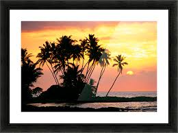 hawaii big island wailua bay view of palm trees at sunset calm